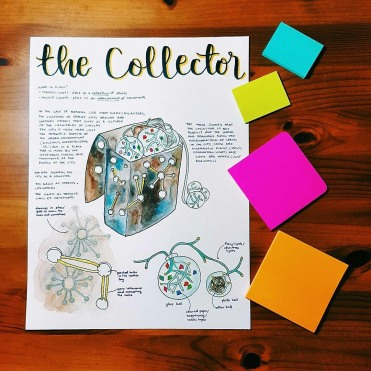 """The Collector"""